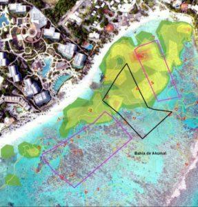 Akumal Bay Reef Area Map 2016
